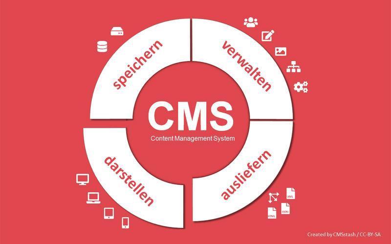 Schematisce Darstellung CMS