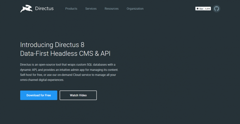 Screenshot Directus CMS