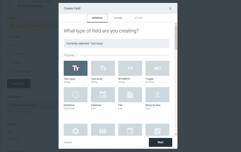 Screenshot Feld-Auswahl bei Directus CMS
